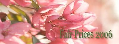 Fairprices 2006