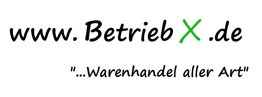 www.BetriebX.de