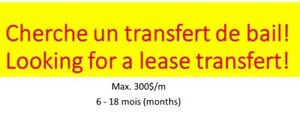 Looking for a lease transfert: max 300$/m, 6 to 18 months left