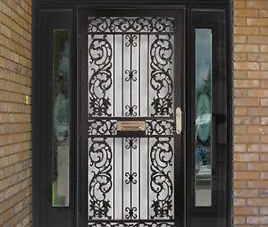 Decorative and Security Storm Door
