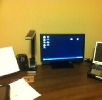Dell 20 in flat screen monitor mint condition