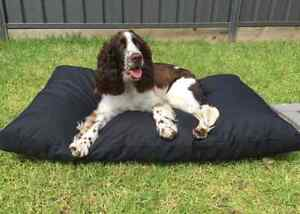 Small indoor/outdoor mat for dogs - TuffMat Bundall Gold Coast City Preview