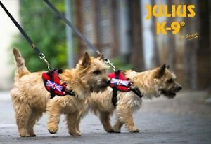 Dog Harnesses - Easy to fit and adjustable harnesses - Julius K9 Downtown-West End Greater Vancouver Area image 9