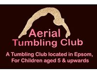 Gymnastics Coach wanted for Aerial Tumbling Club