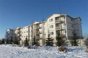 Condos for Sale in Spruce Ridge, Edmonton, Alberta $150,000
