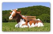 Kuh Lebensgroß