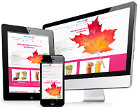 Fall Web Design Special!