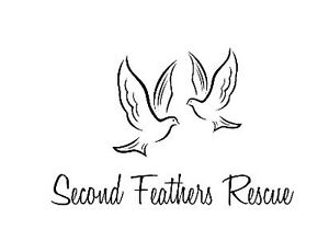 Open letter to the Public- Second Feathers Rescue
