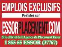 Commis à l'inventaire sur appel - Agence de Placement Essor