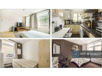 1 bedroom in Wyfold Road, London, SW6 (#1058257)