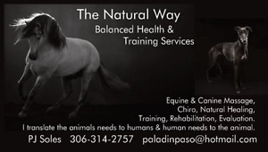 Massage, Chiro, Training, Dietary for Horses Dogs and More.