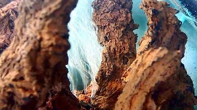 Aquarium Rock Pillar Natural Lava Fairy Garden Raw Renewable Material 8 Stones
