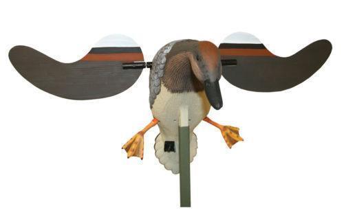 Gadwall Duck Decoys Ebay
