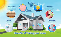 TINT Your Home Windows NOW!!