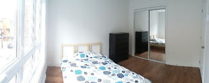 Lease transfer for a bright, renovated room in a 4½ in Plateau