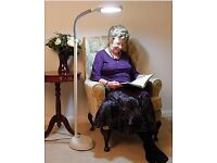 Day light reading lamp as sold by Coopers of Stortford
