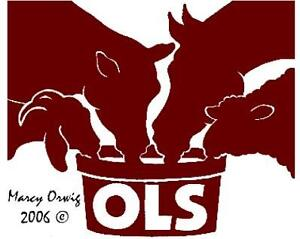 OLS Mineral Tubs for Horses, Cattle, Sheep and Goats