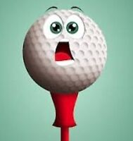 Guys or Gals     -      Still Looking for my Hole in One