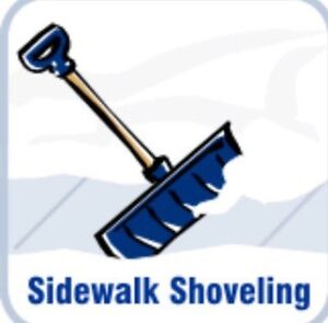 Professional Snow Removal !!FULLY INSURED!! Kingston Kingston Area image 2