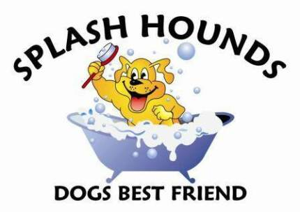 SPLASH HOUNDS DOG WASH