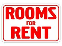 Twin Room To Rent *Town Centre