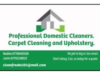 Cleaner/professional carpet cleaning and uphostery
