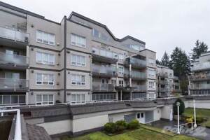 Condos for Sale in Whalley, Surrey, British Columbia $348,800