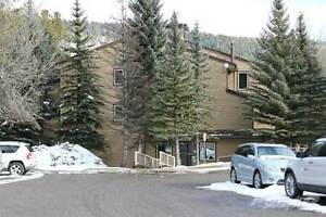 Condos for Sale in Elkford, British Columbia $45,900