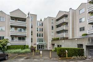 Condos for Sale in Whalley, Surrey, British Columbia $418,800