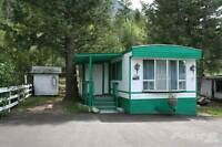 Homes for Sale in Dry Gulch, British Columbia $29,900