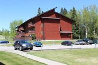 Condos for Sale in Sparwood, British Columbia $89,900