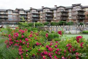Condos for Sale in Westbank, British Columbia $344,900