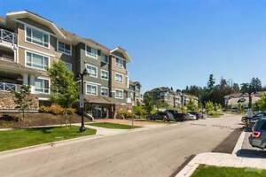 Homes for Sale in Cloverdale, Surrey, British Columbia $479,900