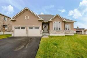 15 Patchell Crt
