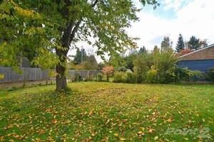445 Pidcock Ave Comox / Courtenay / Cumberland Comox Valley Area image 3