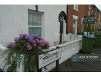 4 bedroom house in Middle Street, Southampton, SO14 (4 bed) (#1105811)