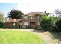 3 bedroom detached house to rent Plaxdale Green Road - NO FEES