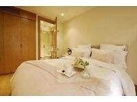 One Bedrooms Furnished Flats