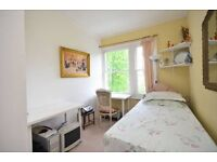 Nice single room in centre ideal for young professionals or students
