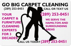 FRESHLY STEAM CLEANED CARPETS AND FURNITURE CALL GO BIG CLEANING