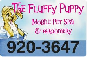 DOG GROOMING - THE FLUFFY PUPPY MOBILE PET SPA