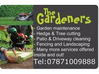Property and garden maintenance and exterior cleaning. Driveways, Fencing, landscaping