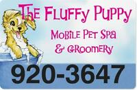 THE FLUFFY PUPPY MOBILE PET SPA -- NOW BOOKING