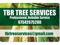 Tree work, hedging and garden maintenance