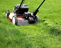 Summer Lawn Care Starting At $30/Week