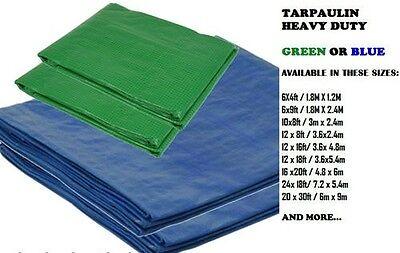 Heavy Duty Waterproof Strong Cover Ground Sheet 12/' X 8/' Tarpaulin Blue