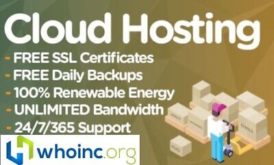 1 Website Web Hosting For 1 Year 100 Ssd Cpanel Support Included