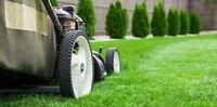 J & J Lawn and Yard Care Services