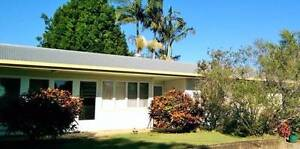 Lovely House in Hendra for Rent Hendra Brisbane North East Preview