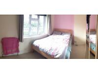 Double Room in Friendly Professional Houseshare